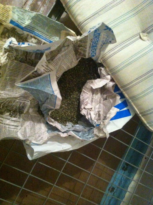 В днепродзержинской больнице у пациента обнаружили опий и коноплю (фото) - фото 2