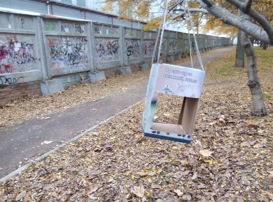 0d8b06f9b4890a2810f7b6d03f742209 Перестарались: В Одессе школьники закормили птиц перед зимой