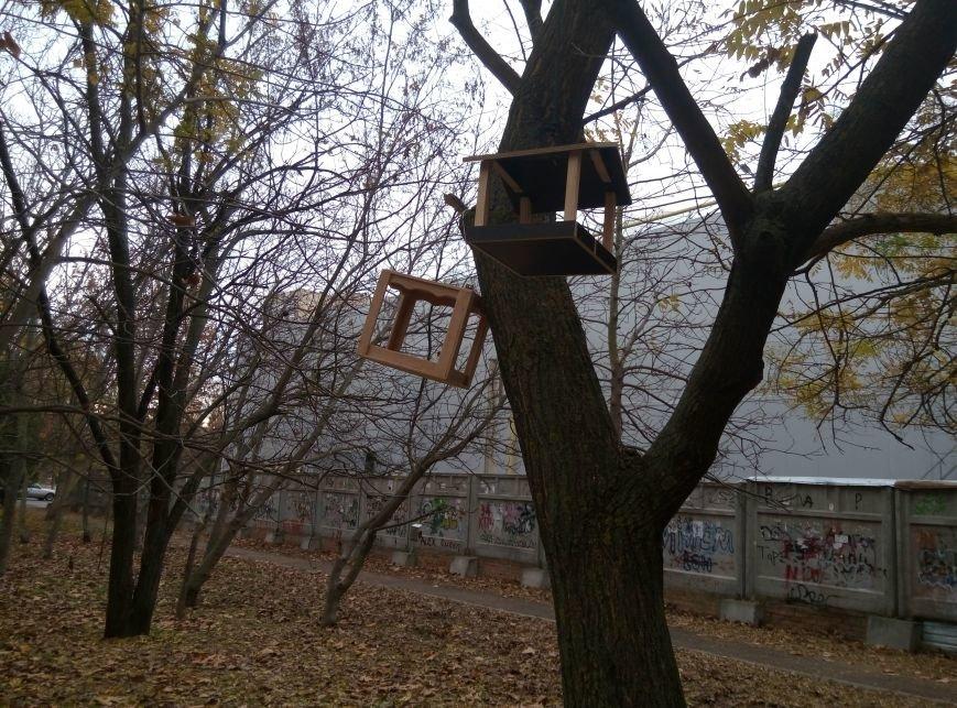 313eefad0a0b5d11c9d28b19c3cd087d Перестарались: В Одессе школьники закормили птиц перед зимой