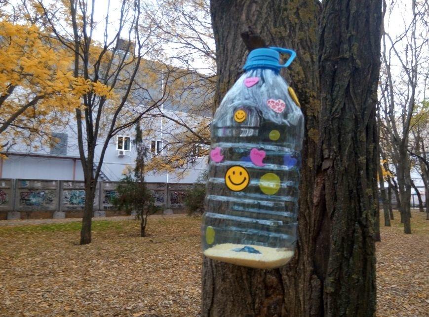 93f5161e1fc2fa6d5953d240f913a425 Перестарались: В Одессе школьники закормили птиц перед зимой