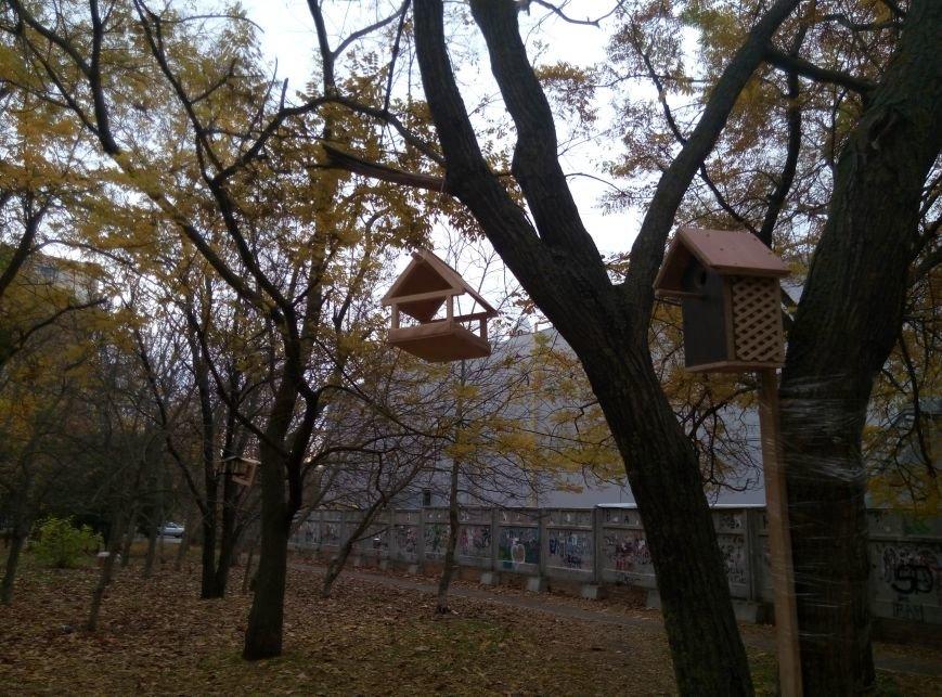 e99c2c16c99db5f68387c4648d87f852 Перестарались: В Одессе школьники закормили птиц перед зимой