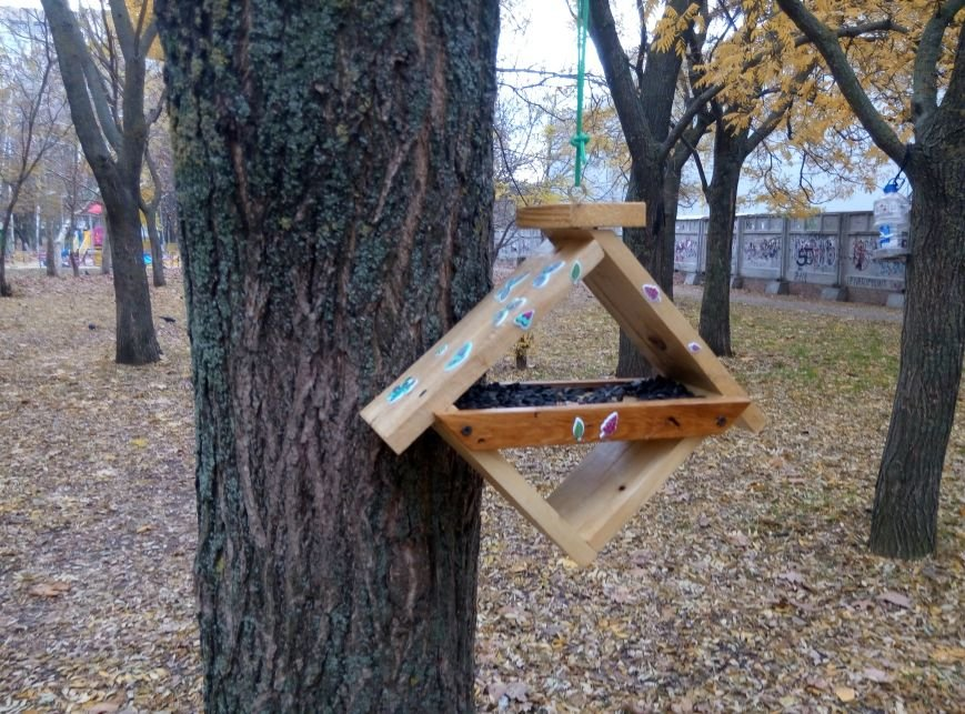 f5b96a4343a93e16505737f26a5c41bc Перестарались: В Одессе школьники закормили птиц перед зимой