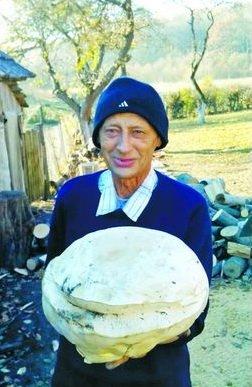 На Тернопільщині знайшли мегагриб (фото) - фото 1