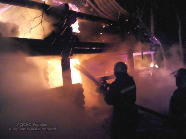 На Тернопільщині через масштабну пожежу дерев'яного будинку ледь не загорівся ліс (відео, фото) (фото) - фото 1