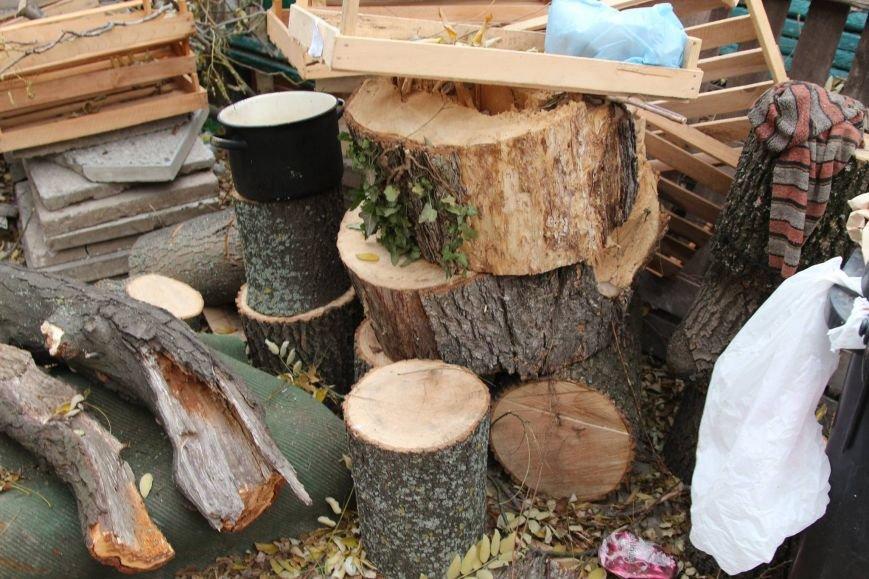 4f3b926581dc6dc9c91823381e9a7caa Расширение дороги? Вдоль одесской Трассы здоровья пять дней вырубывают деревья