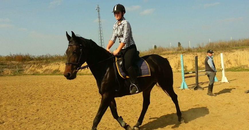 c4524eb80acb829eae1cbeeb13468a5b В Одесской области хозяева конюшни довели до голодной смерти не принадлежащую им лошадь