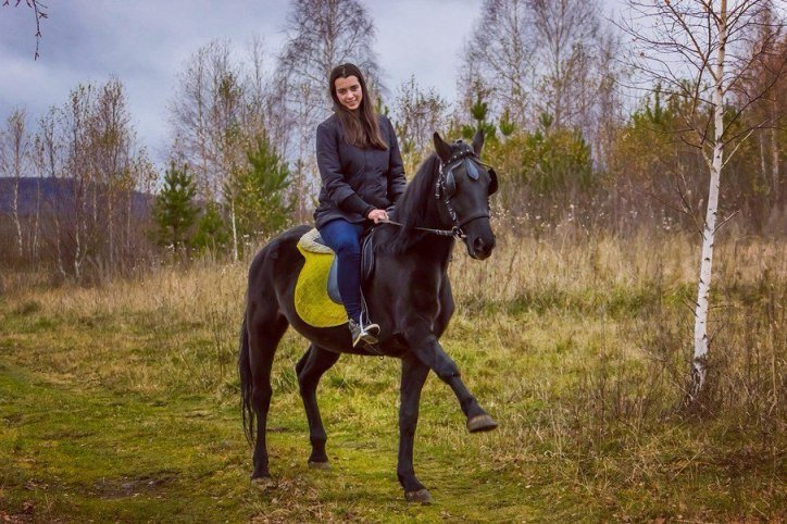 к лошадям-02