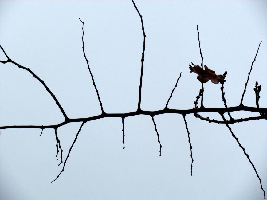 Фотопятница: «На утро после стихийного бедствия. Живопись и графика» (фото) - фото 5