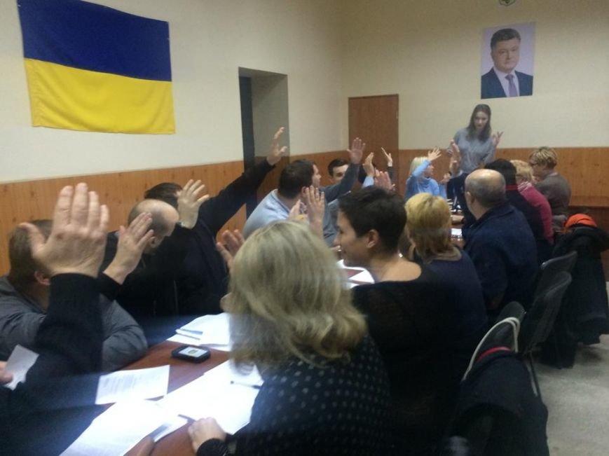 Мариупольская теркомиссия заступилась за избирателей, попросив ЦИК разрешить агитацию (ФОТО, Видео), фото-3