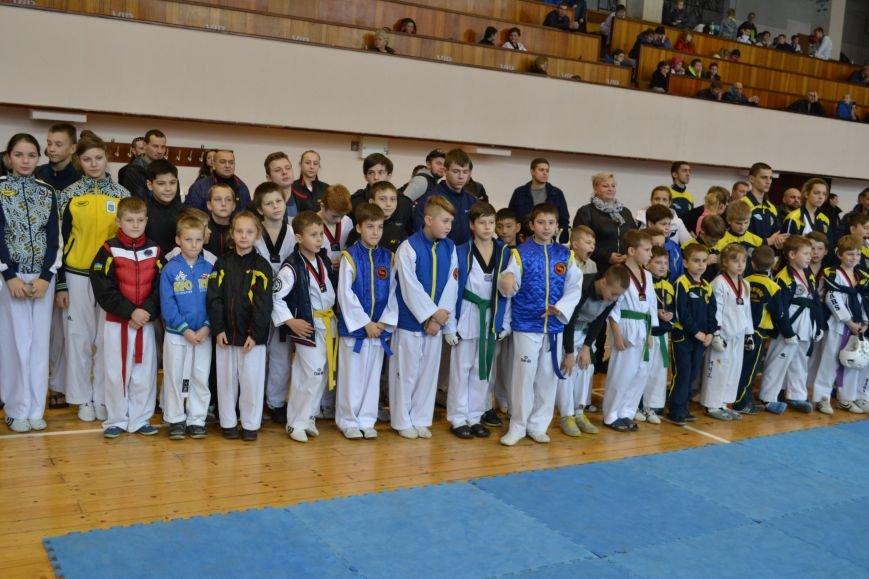 Днепродзержинск принял областной чемпионат по тхеквондо, фото-1