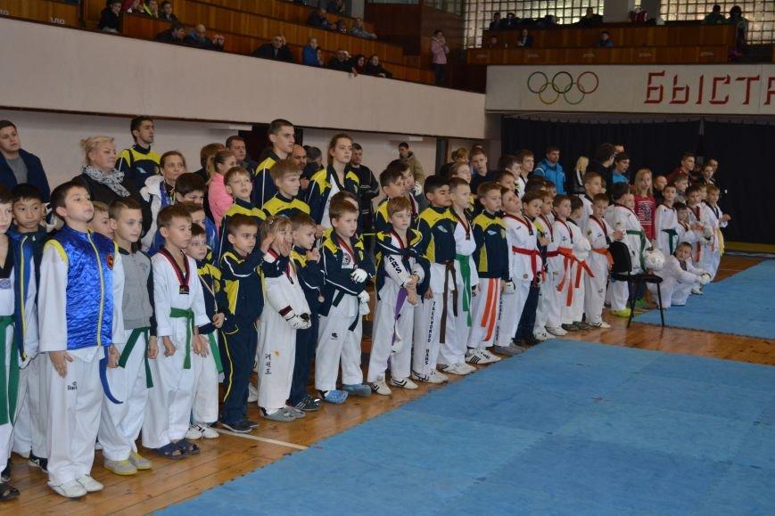 Днепродзержинск принял областной чемпионат по тхеквондо, фото-5