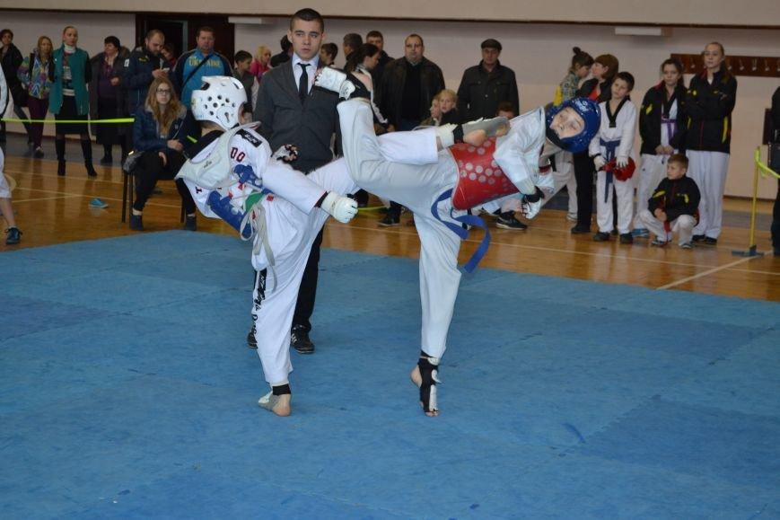 Днепродзержинск принял областной чемпионат по тхеквондо, фото-7