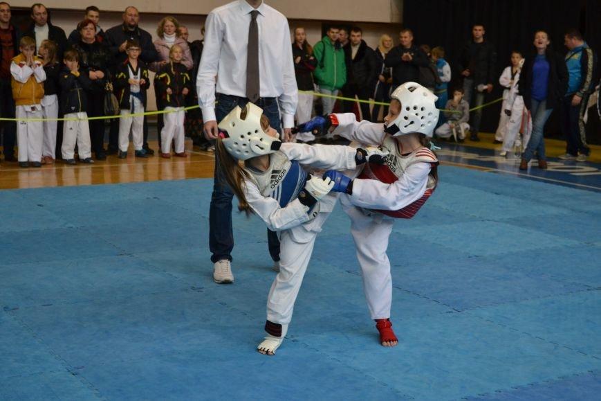 Днепродзержинск принял областной чемпионат по тхеквондо, фото-9