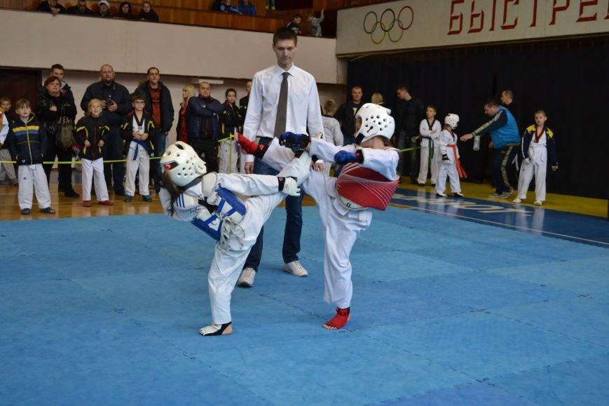Днепродзержинск принял областной чемпионат по тхеквондо, фото-8