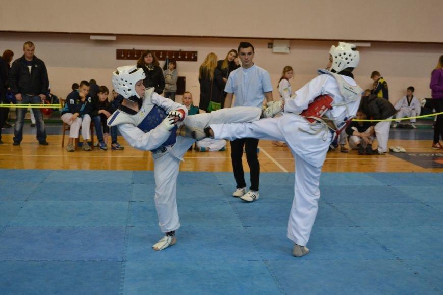 Днепродзержинск принял областной чемпионат по тхеквондо, фото-15
