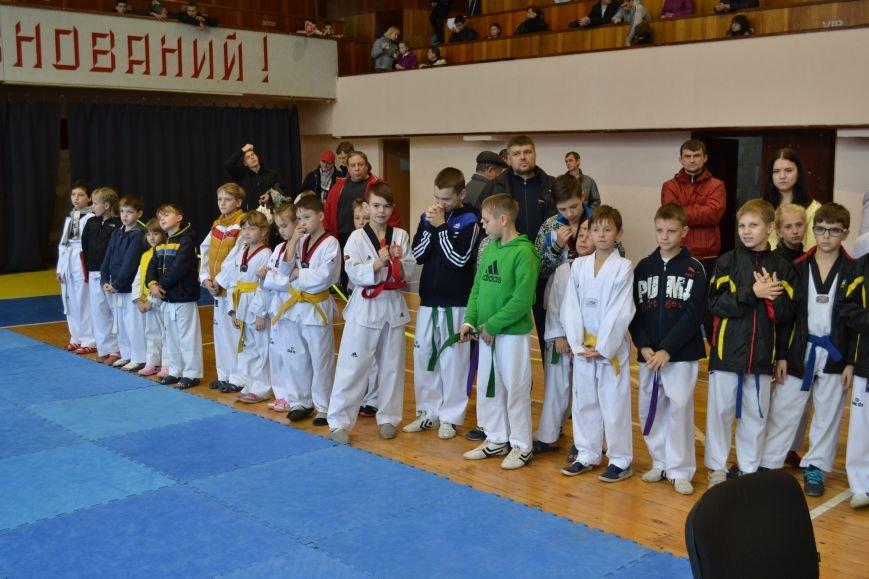 Днепродзержинск принял областной чемпионат по тхеквондо, фото-4