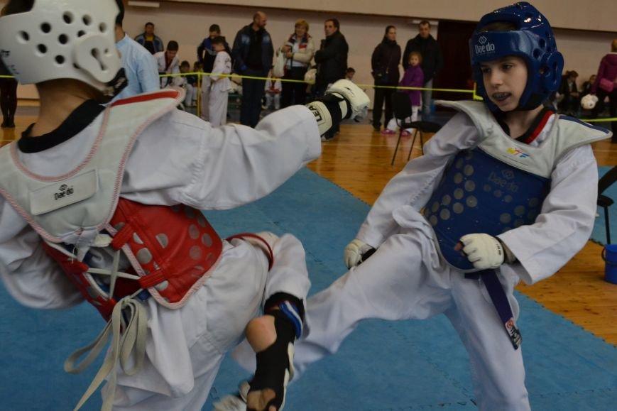 Днепродзержинск принял областной чемпионат по тхеквондо, фото-12
