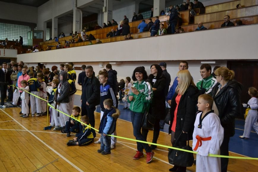 Днепродзержинск принял областной чемпионат по тхеквондо, фото-14