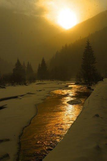 Свято наближається: Карпати чарують туристів зимовою красою (фото) - фото 1