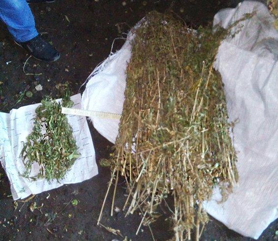 У жителя Сумщины обнаружили более килограмма марихуаны (ФОТО) (фото) - фото 1