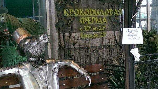 Ялтинский «Крокодилляриум» вывел на улицу удлинитель  - прохожие могут подзарядить мобильные (фото) - фото 1