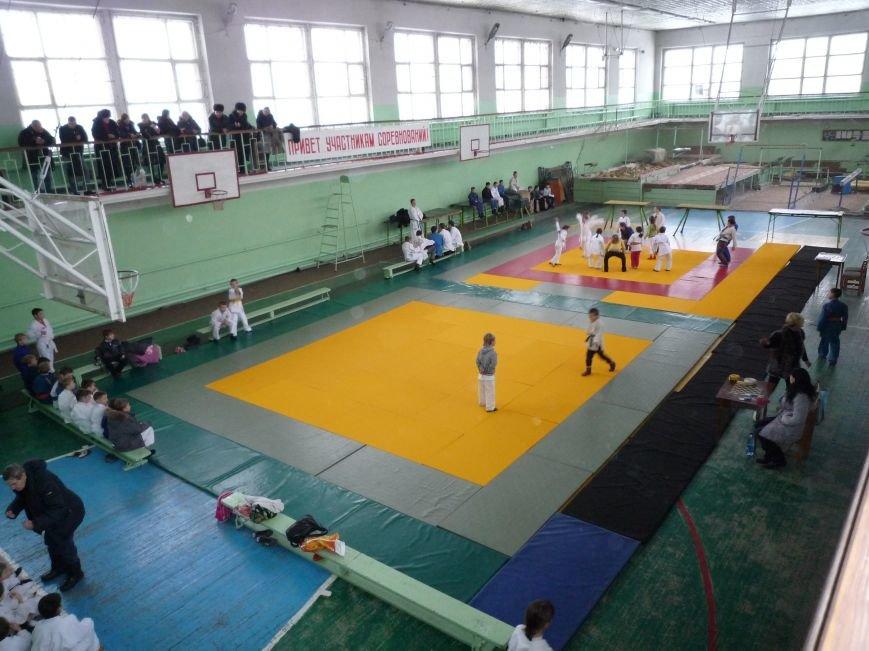 Команда дзюдоистов Доброполья завоевала 7 призовых мест на Чемпионате Донецкой области (фото) - фото 1