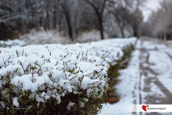 Ночью Краматорск накрыло снегом (ФОТО) (фото) - фото 15