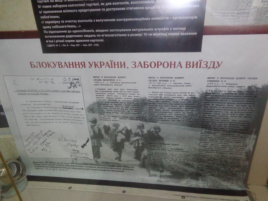 Красноармейский исторический музей представил информационную выставку, посвященную жертвам зверств Голодомора (фото) - фото 3