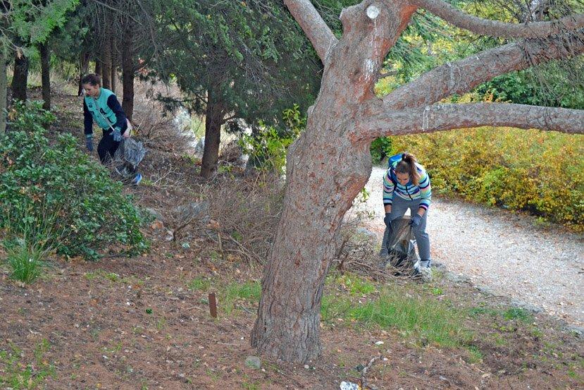 Молодгвардейцы провели субботник в Алупкинском парке, фото-1