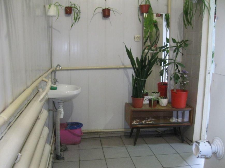 Шерстянка сад в туалете