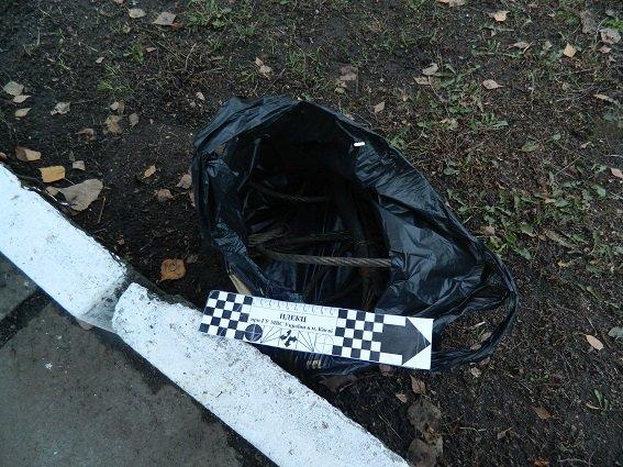 В Киеве автоугонщики избили водителя (ФОТО) (фото) - фото 1