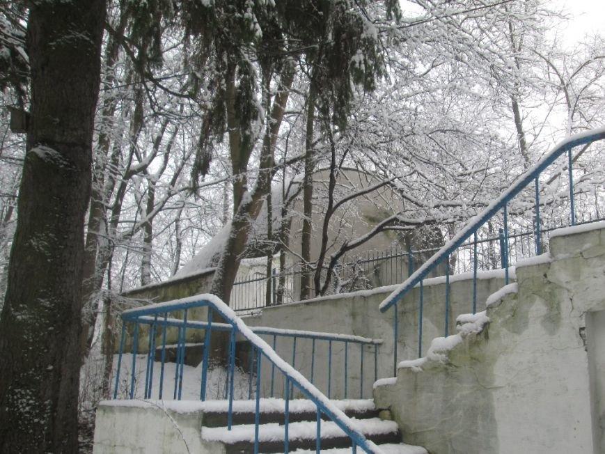 парк6