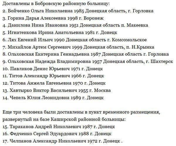 В числе пострадавших в ДТП в Воронежской области были макеевчане (фото) - фото 2