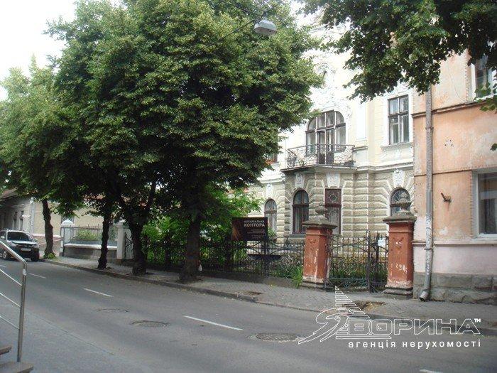 «Невеличкий палац» в центрі Тернополя, збудований у 19 столітті, виставили на продаж за шалені гроші (фото) - фото 1