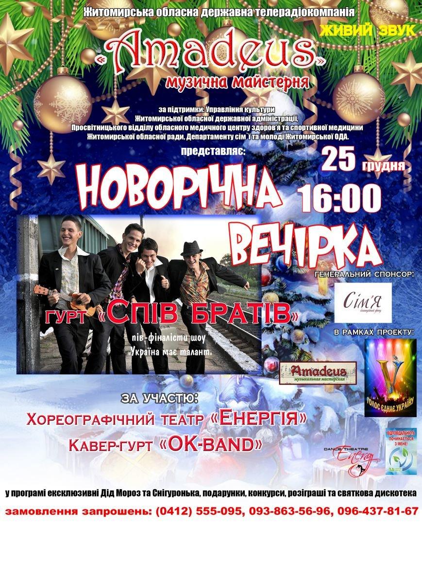 У Житомирі влаштовують «Новорічну вечірку» (фото) - фото 1