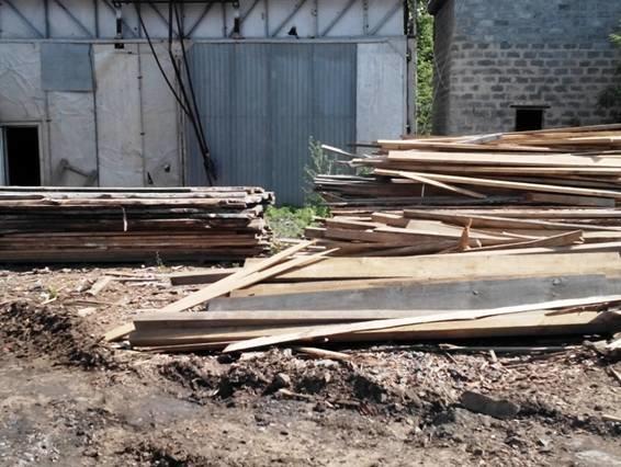 Краматорчанин организовал бизнес на незаконной вырубке леса (фото) - фото 1