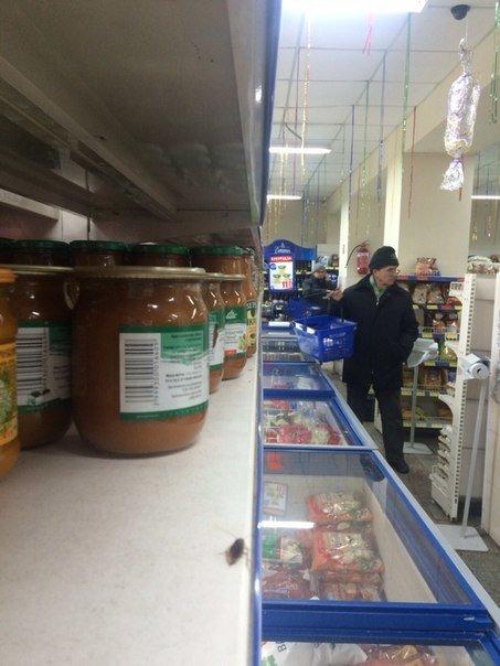 Николаевский супермаркет атаковали тараканы (ФОТОФАКТ) (фото) - фото 4