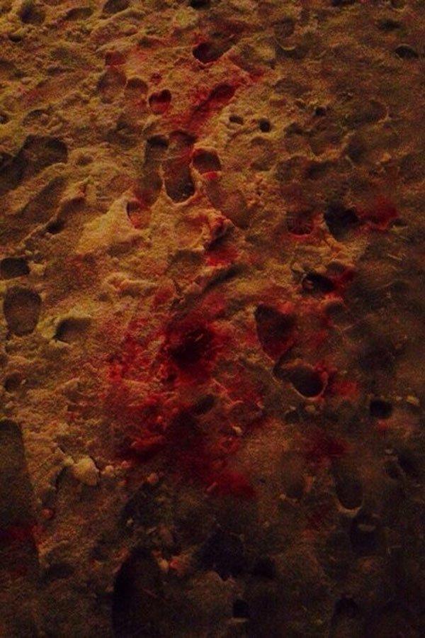 В Харькове иностранцы избили человека (ФОТО) (фото) - фото 1