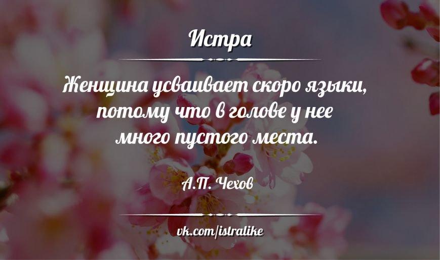 цитата-116