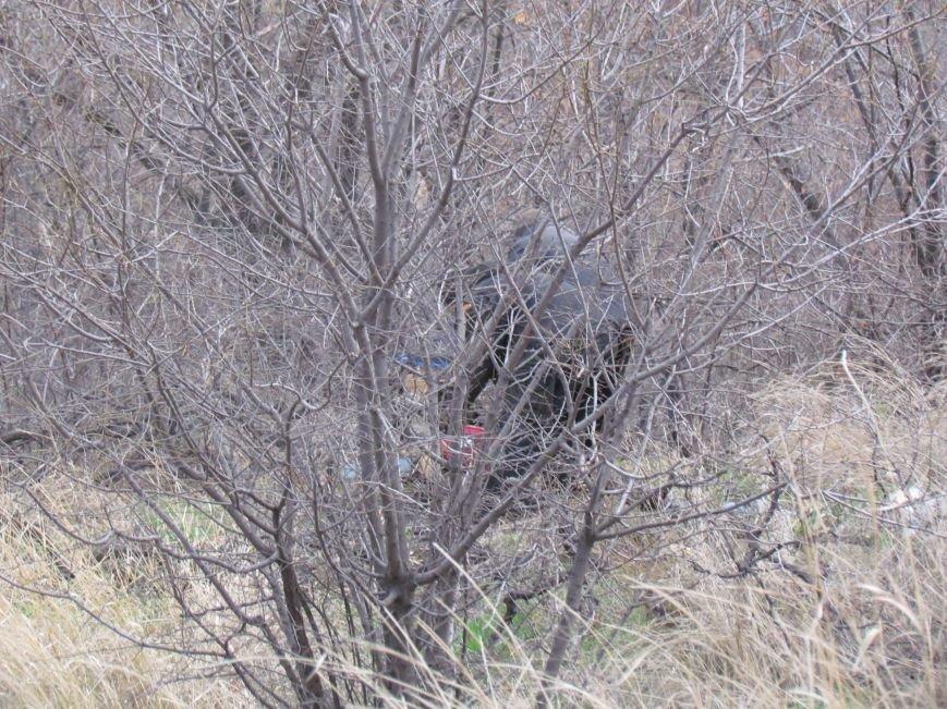 Бдительные горожане начали охоту на незаконных лесорубов в Мариуполе (ФОТО), фото-1