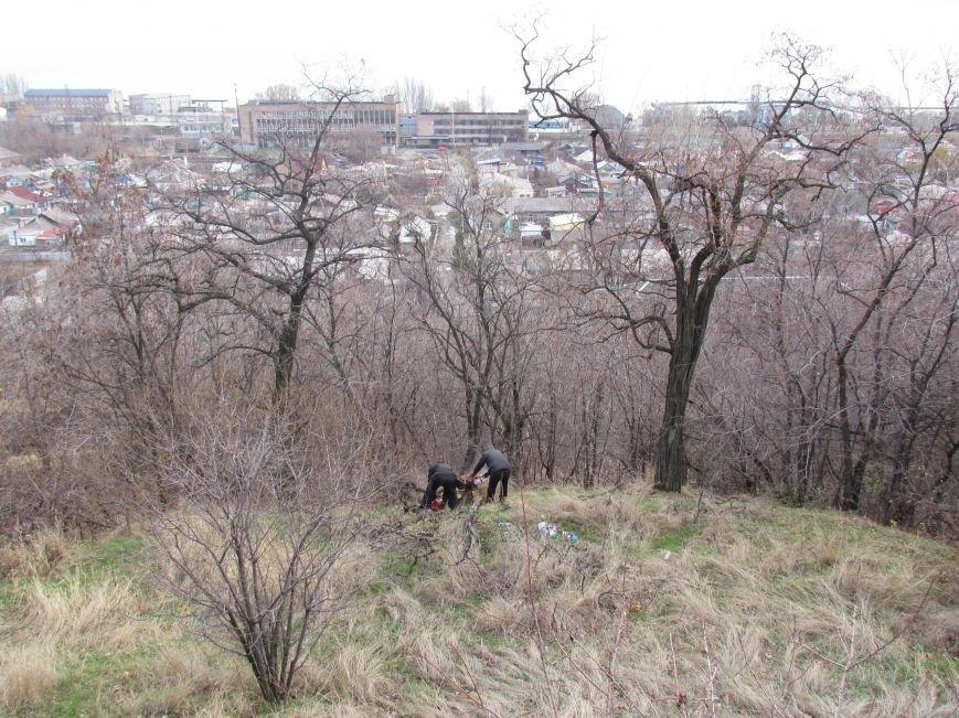 Бдительные горожане начали охоту на незаконных лесорубов в Мариуполе (ФОТО), фото-5