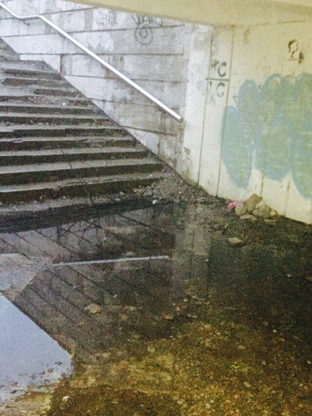 Львів'яни знову скаржаться на жахливий стан підземного переходу на перехресті вулиць Стрийська-В.Великого (ФОТО), фото-4
