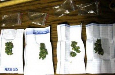 Винуватців дрібної крадіжки затримали за зберігання наркотичної сировини (ФОТО), фото-1
