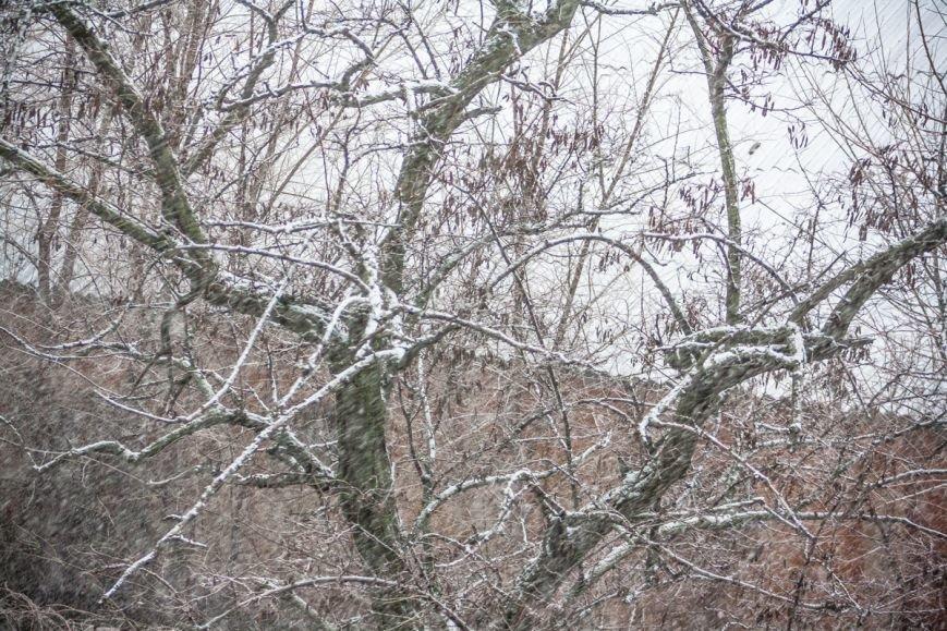 В Ростове-на-Дону пошел обещанный синоптиками снег, фото-2
