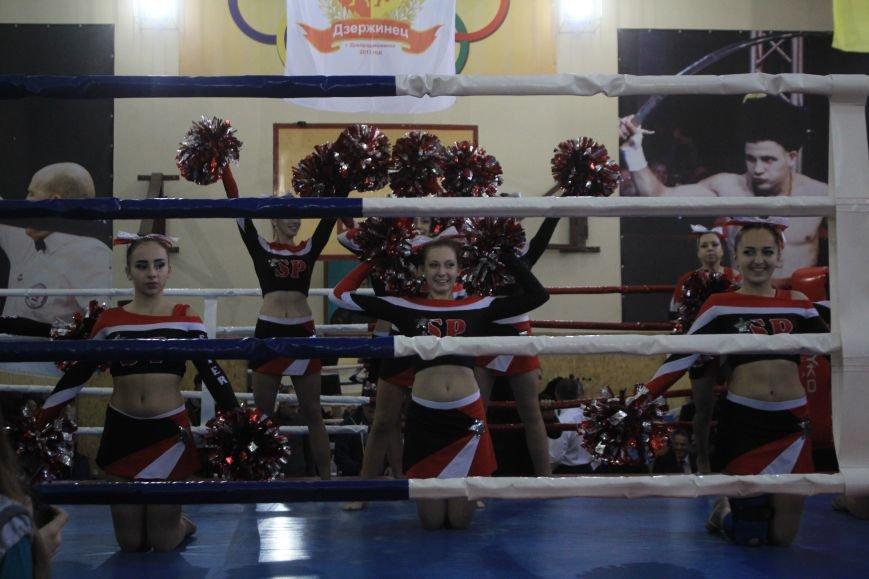 В Днепродзержинске состоялось открытие всеукраинского турнира по боксу, фото-10