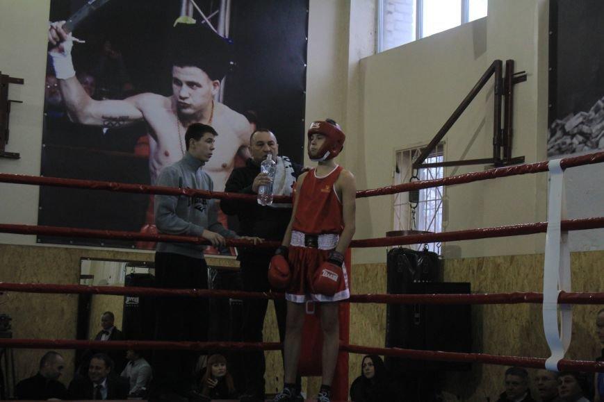 В Днепродзержинске состоялось открытие всеукраинского турнира по боксу, фото-12