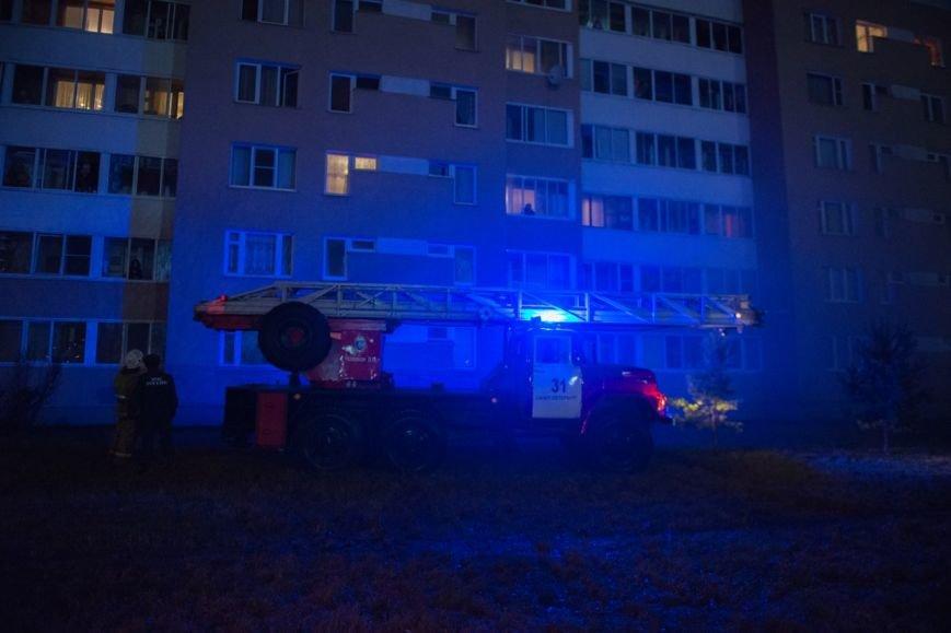 Пожар в городе Пушкине унес человеческую жизнь (фото) - фото 1