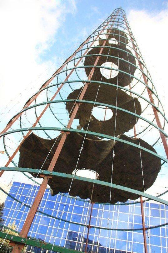 Три новогодние ёлки скоро украсят город Ильичевск (+фото) (фото) - фото 1
