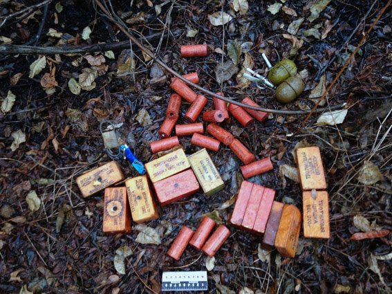 В Красноармейском районе обнаружен тайник с боеприпасами (фото) - фото 1