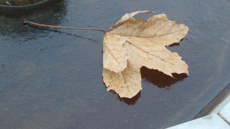 Мариуполь посетил мороз (ФОТОФАКТ) (фото) - фото 1